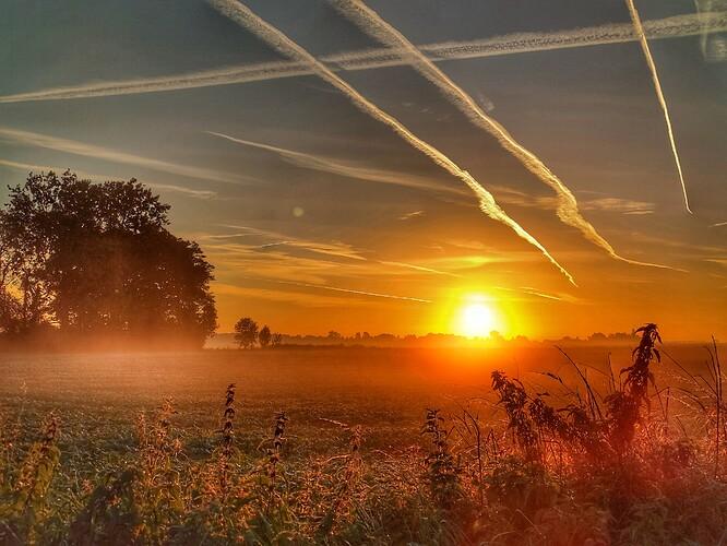 lever soleil.jpeg
